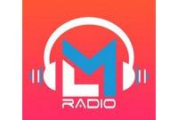 LMR Radio