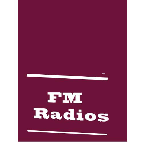 Indian FM Radios